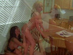 Stormy Daniels and Lily Paige are awesome