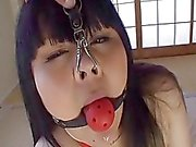 Subtitles BBW Japanese land whale anal play