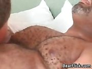 Gay black bear has great sex as he sucks part6