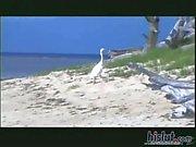 Gabriella Bond loves hard cock on the beach