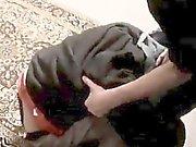3gp sex gay school xxx An Orgy Of Boy Spanking!