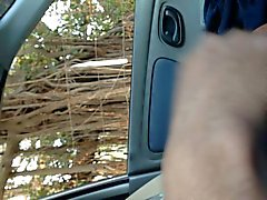 dick flash in car